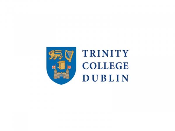 Phd thesis available online